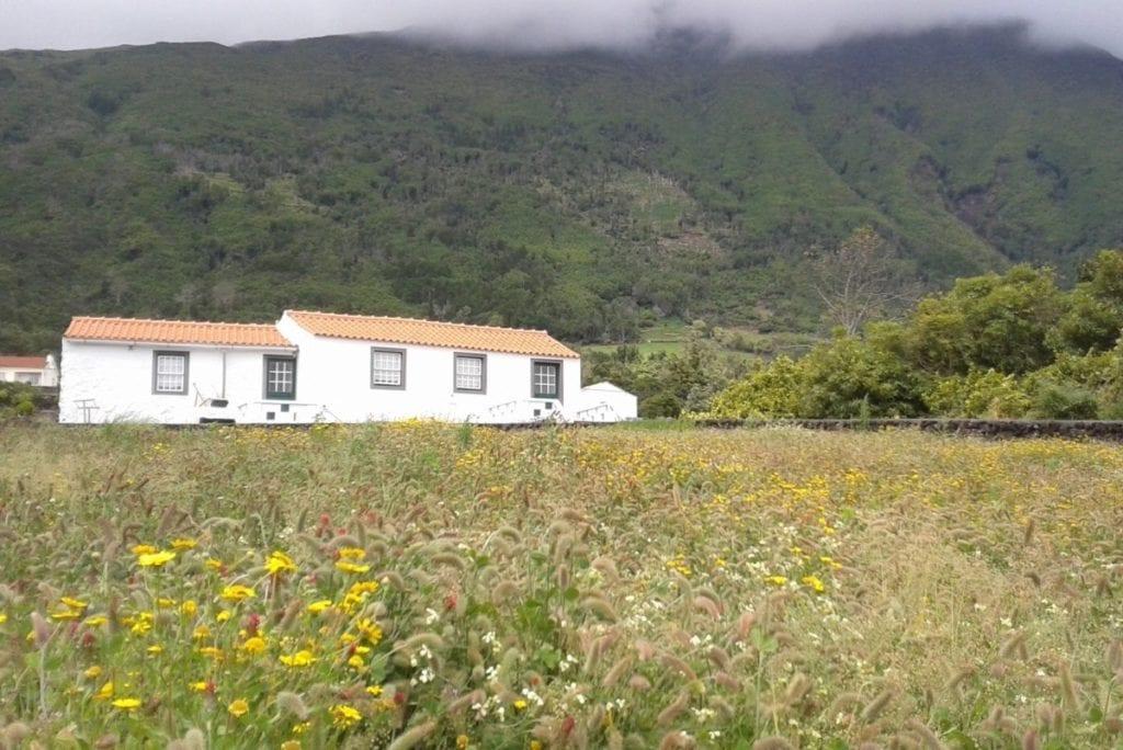 Wit gepleisterde boerderijen op de Azoren aan de voet van de berg Pico