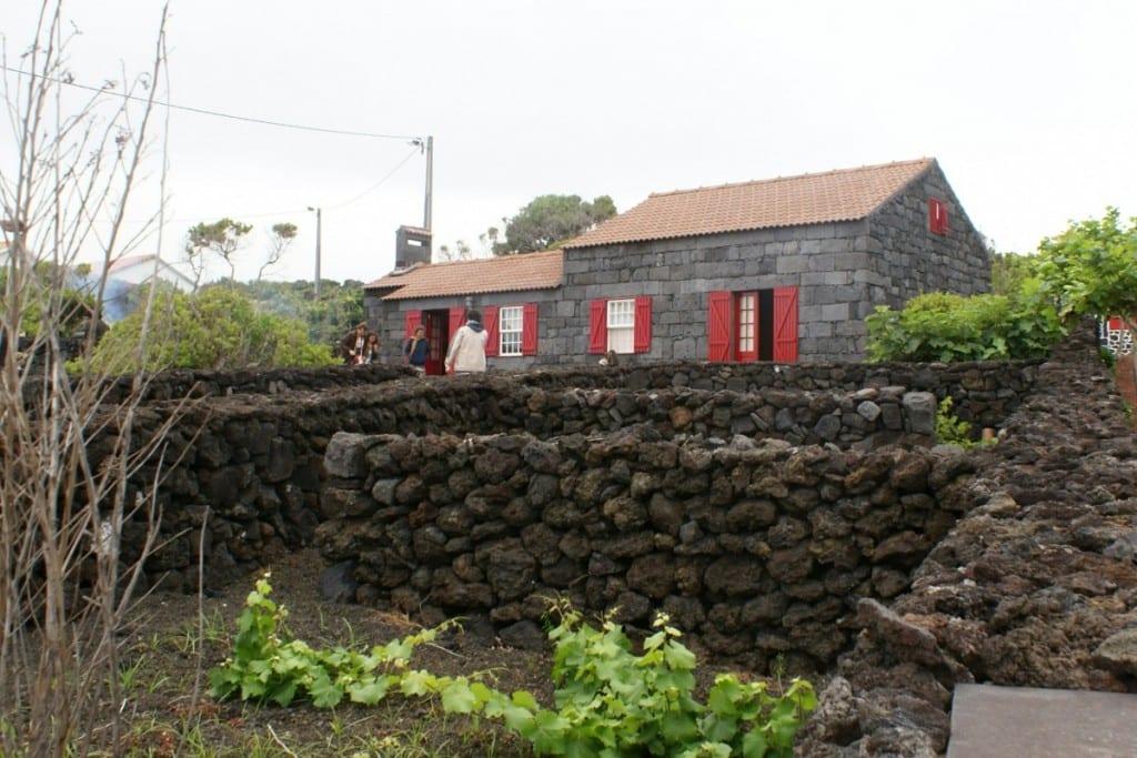Boerderijen op de Azoren in lavasteen op het eiland Pico