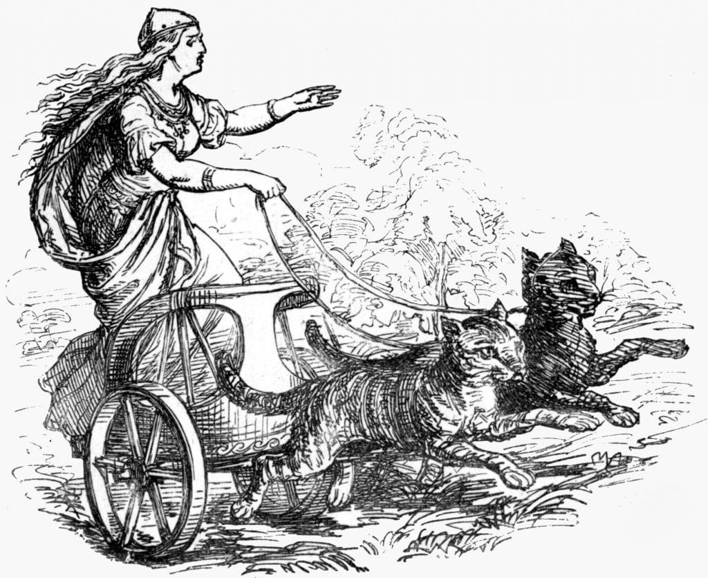 freya-op-haar-door-katten-voortgetrokken-rijtuig