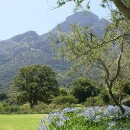 Bijzondere tuinen in Zuid-Afrika